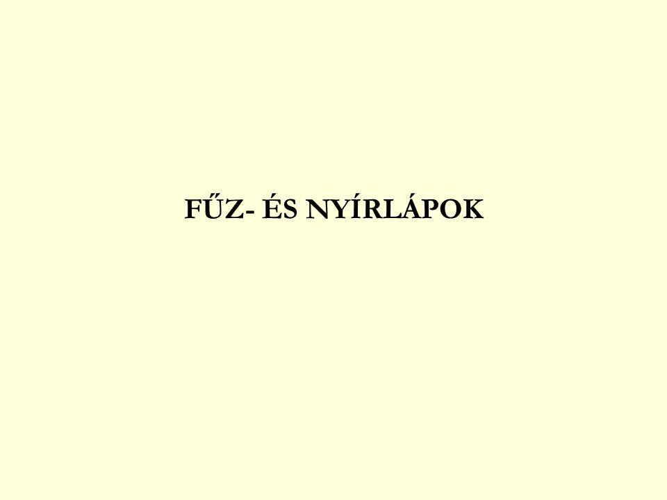 FŰZ- ÉS NYÍRLÁPOK