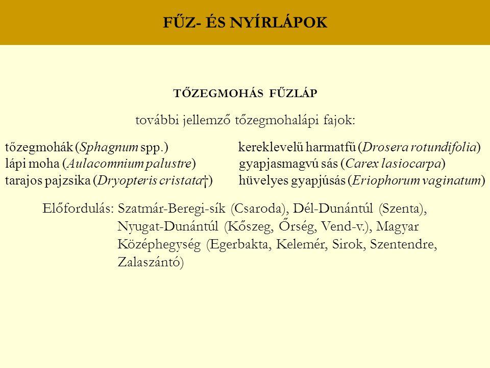 FŰZ- ÉS NYÍRLÁPOK TŐZEGMOHÁS FŰZLÁP további jellemző tőzegmohalápi fajok: tőzegmohák (Sphagnum spp.) kereklevelű harmatfű (Drosera rotundifolia) lápi
