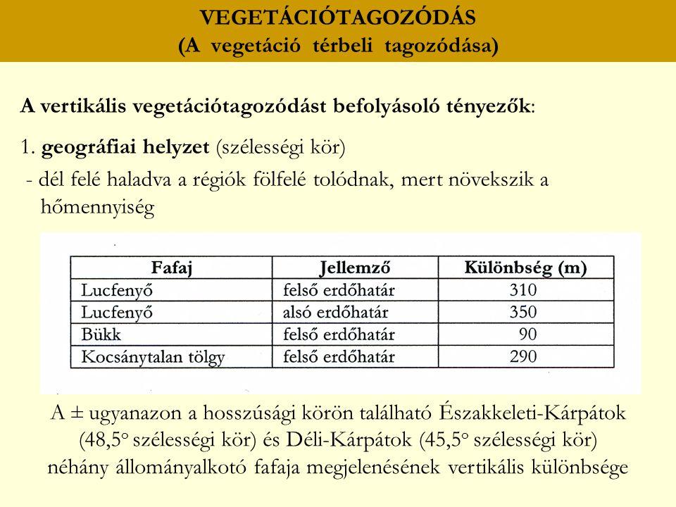 VEGETÁCIÓTAGOZÓDÁS (A vegetáció térbeli tagozódása) A vertikális vegetációtagozódást befolyásoló tényezők: 1. geográfiai helyzet (szélességi kör) - dé