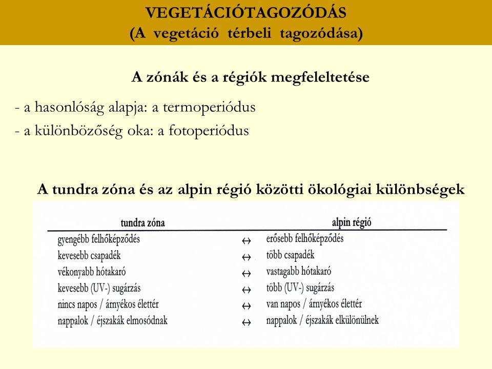 VEGETÁCIÓTAGOZÓDÁS (A vegetáció térbeli tagozódása) A zónák és a régiók megfeleltetése - a hasonlóság alapja: a termoperiódus - a különbözőség oka: a