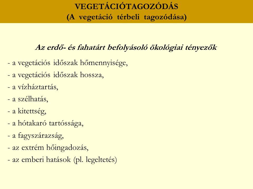 VEGETÁCIÓTAGOZÓDÁS (A vegetáció térbeli tagozódása) Az erdő- és fahatárt befolyásoló ökológiai tényezők - a vegetációs időszak hőmennyisége, - a veget