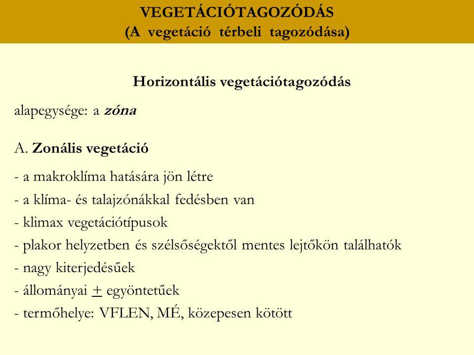 VEGETÁCIÓTAGOZÓDÁS (A vegetáció térbeli tagozódása) Horizontális vegetációtagozódás alapegysége: a zóna A. Zonális vegetáció - a makroklíma hatására j