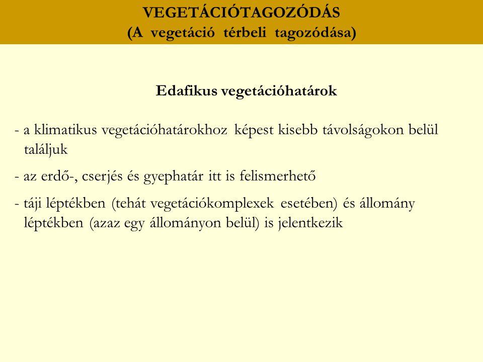 VEGETÁCIÓTAGOZÓDÁS (A vegetáció térbeli tagozódása) Edafikus vegetációhatárok - a klimatikus vegetációhatárokhoz képest kisebb távolságokon belül talá