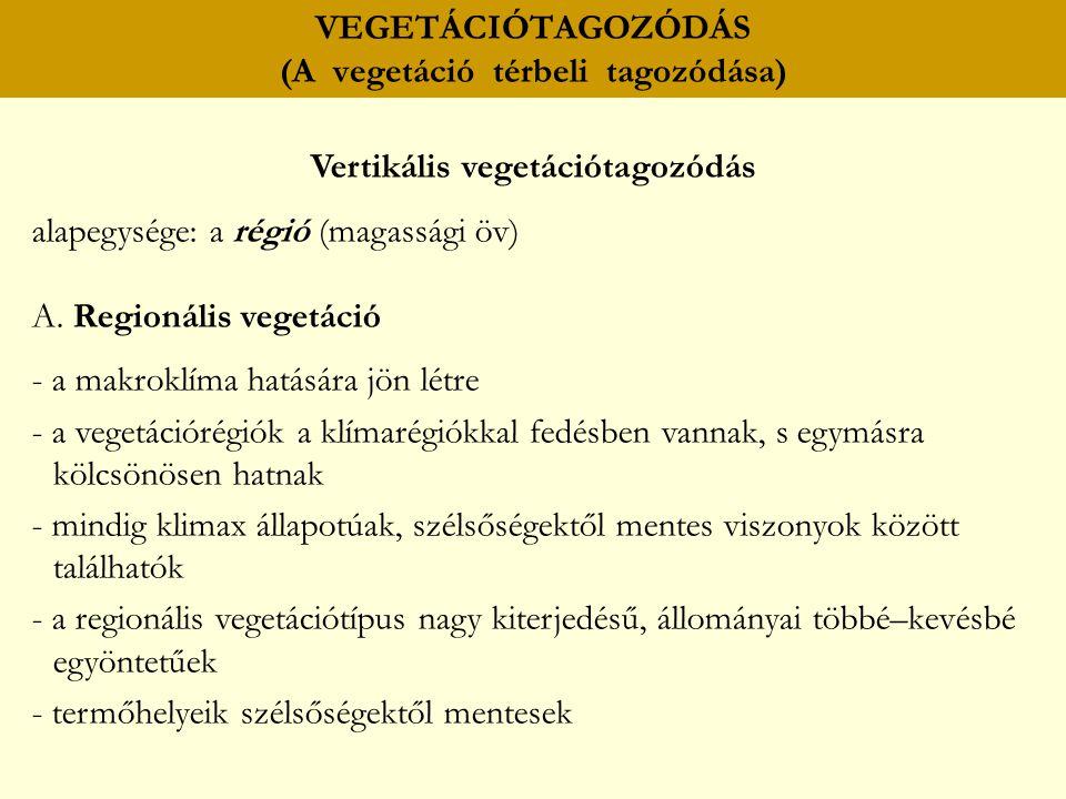 VEGETÁCIÓTAGOZÓDÁS (A vegetáció térbeli tagozódása) Vertikális vegetációtagozódás alapegysége: a régió (magassági öv) A. Regionális vegetáció - a makr