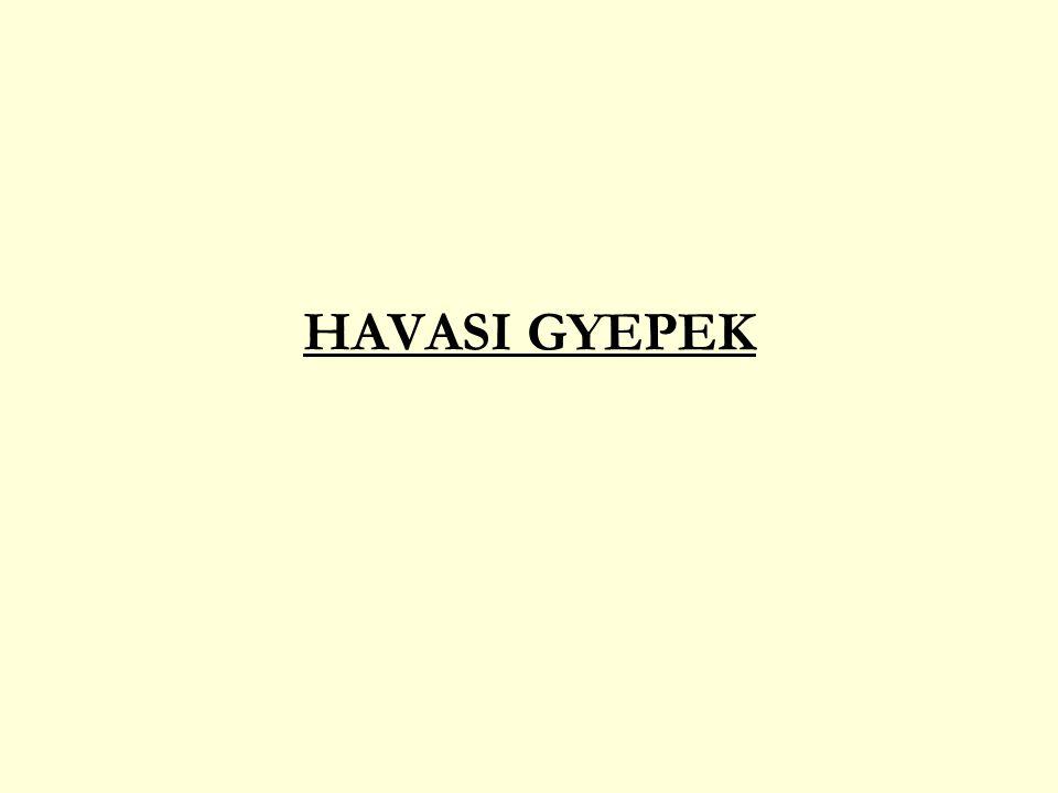 HAVASI GYEPEK