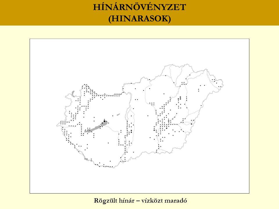 HÍNÁRNÖVÉNYZET (HINARASOK) Rögzült hínár – vízközt maradó