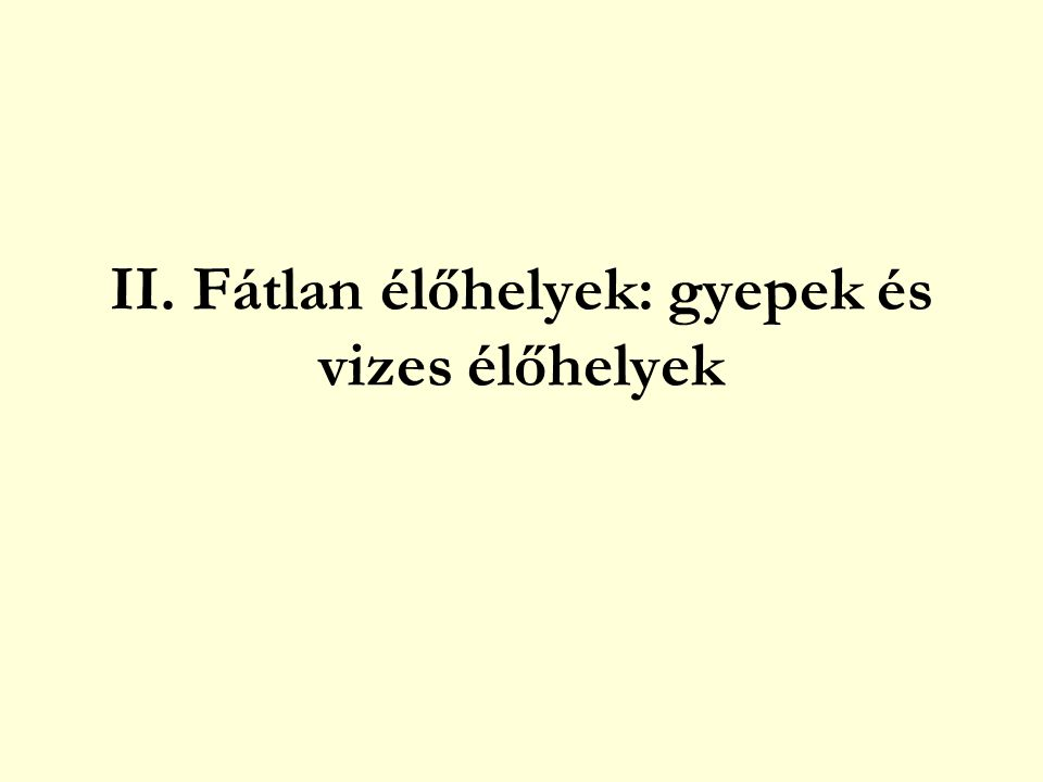 NÁDASOK és GYÉKÉNYESEK nádasok, gyékényesek tömegesen megjelenő fajok nád (Phragmites australis) kákák (Schoenoplectus spp.) gyékények (Typha spp.) téli sás (Cladium mariscus) kísérő fajok sövényszulák (Calystegia sepium) ebszőlő csucsor (Solanum dulcamara) vízi peszérce (Lycopus europeus) réti füzény (Lythrum salicaria) vízi menta (Mentha aquatica) mocsári tisztesfű (Stachys palustris) mocsári kányafű (Rorippa palustris) kiszáradó nádasokban aranyvessző fajok (Solidago spp.)