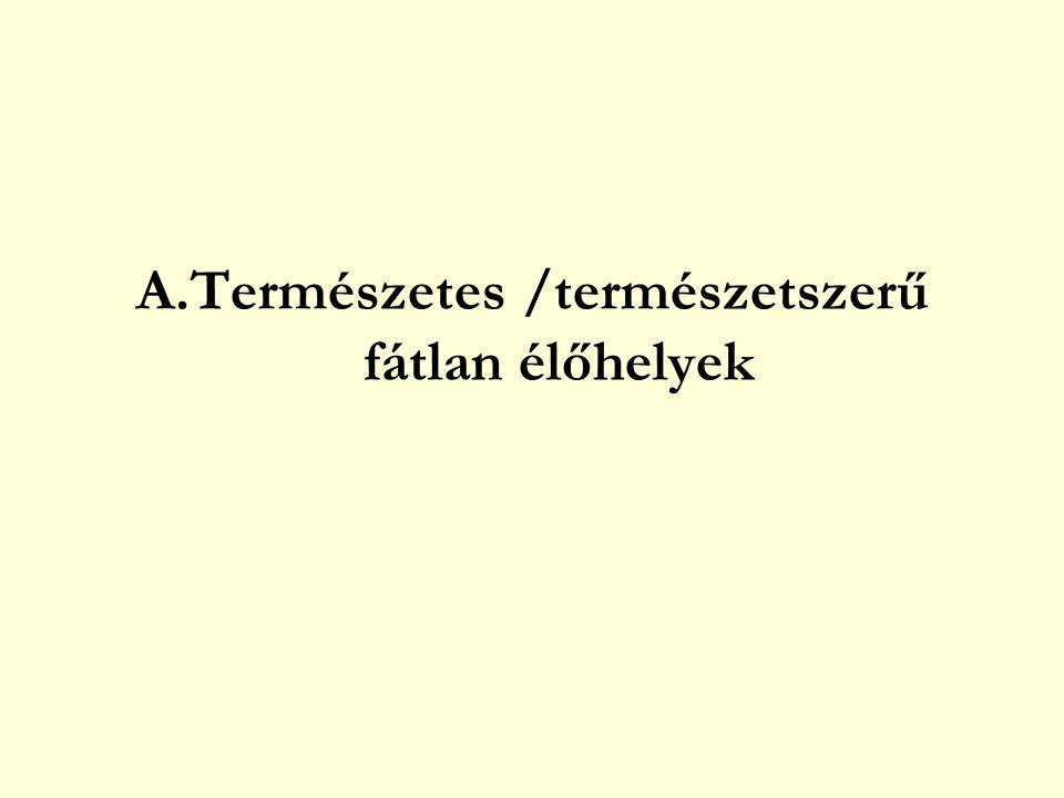 HÍNÁRNÖVÉNYZET (HINARASOK) Rögzült hínár – vízfelszínre emelkedő