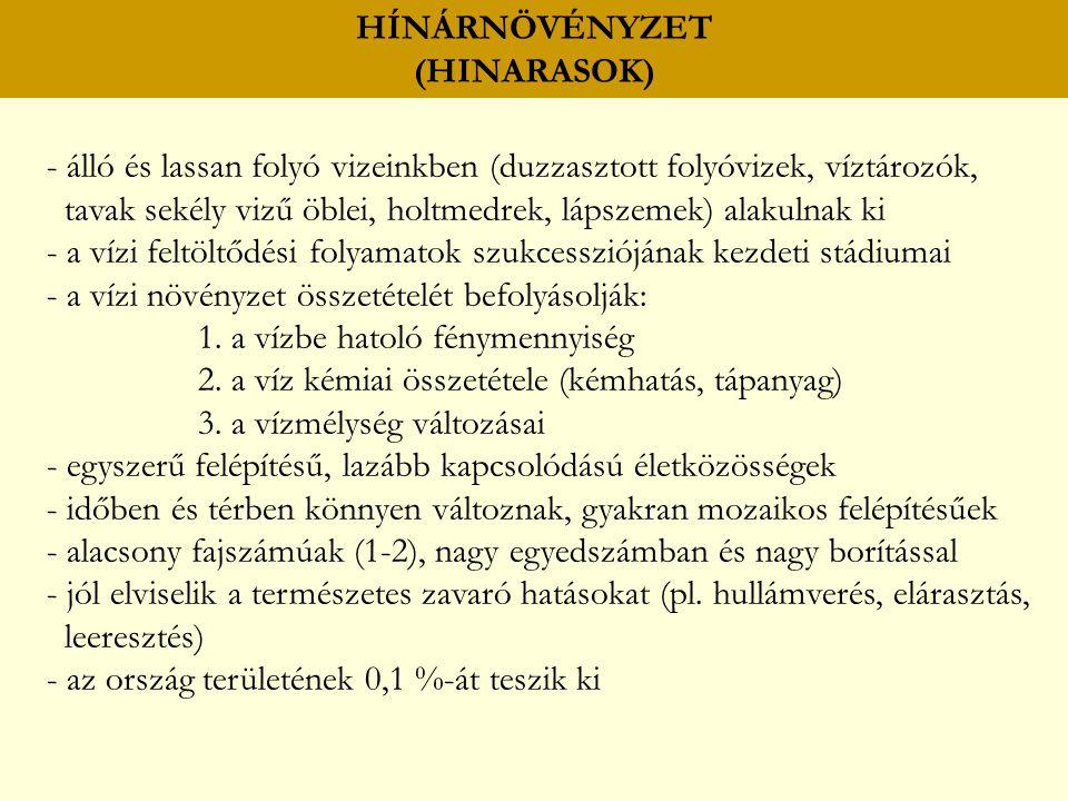 HÍNÁRNÖVÉNYZET (HINARASOK) úszóhínár békalencsefélék (Lemnaceae) békatutaj (Hydrocharis morsus-ranae) rucaöröm (Salvinia natans) sulyom (Trapa natans) vízimohok