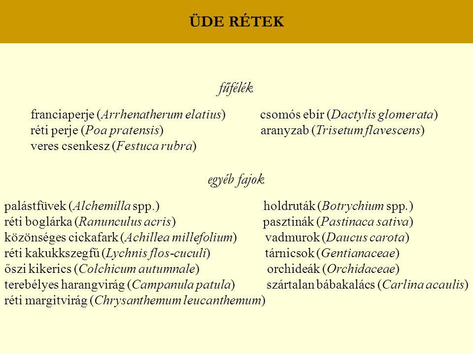 ÜDE RÉTEK fűfélék franciaperje (Arrhenatherum elatius) csomós ebír (Dactylis glomerata) réti perje (Poa pratensis) aranyzab (Trisetum flavescens) vere