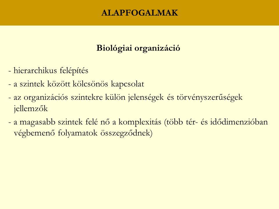 Biológiai organizáció - hierarchikus felépítés - a szintek között kölcsönös kapcsolat - az organizációs szintekre külön jelenségek és törvényszerűsége