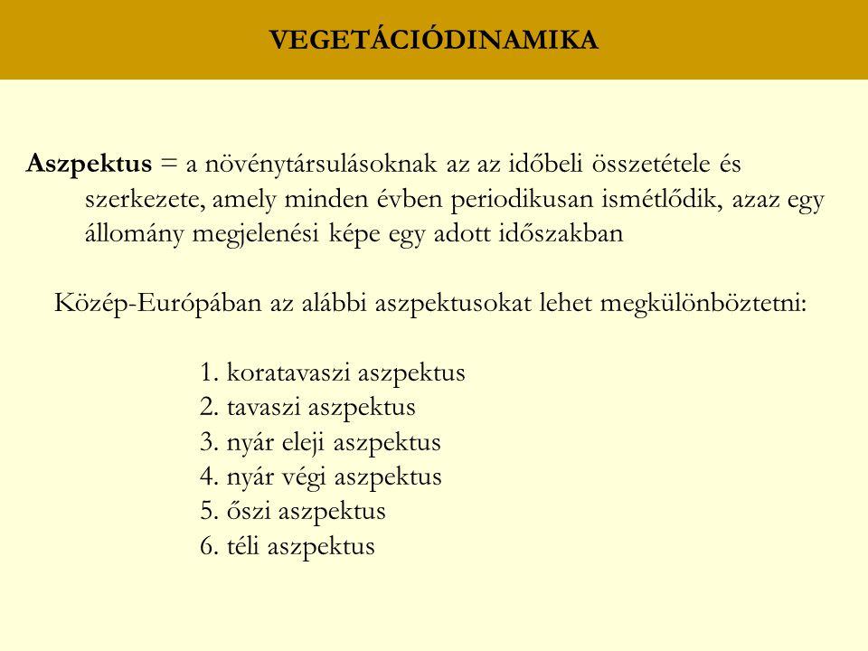 VEGETÁCIÓDINAMIKA Aszpektus = a növénytársulásoknak az az időbeli összetétele és szerkezete, amely minden évben periodikusan ismétlődik, azaz egy állo