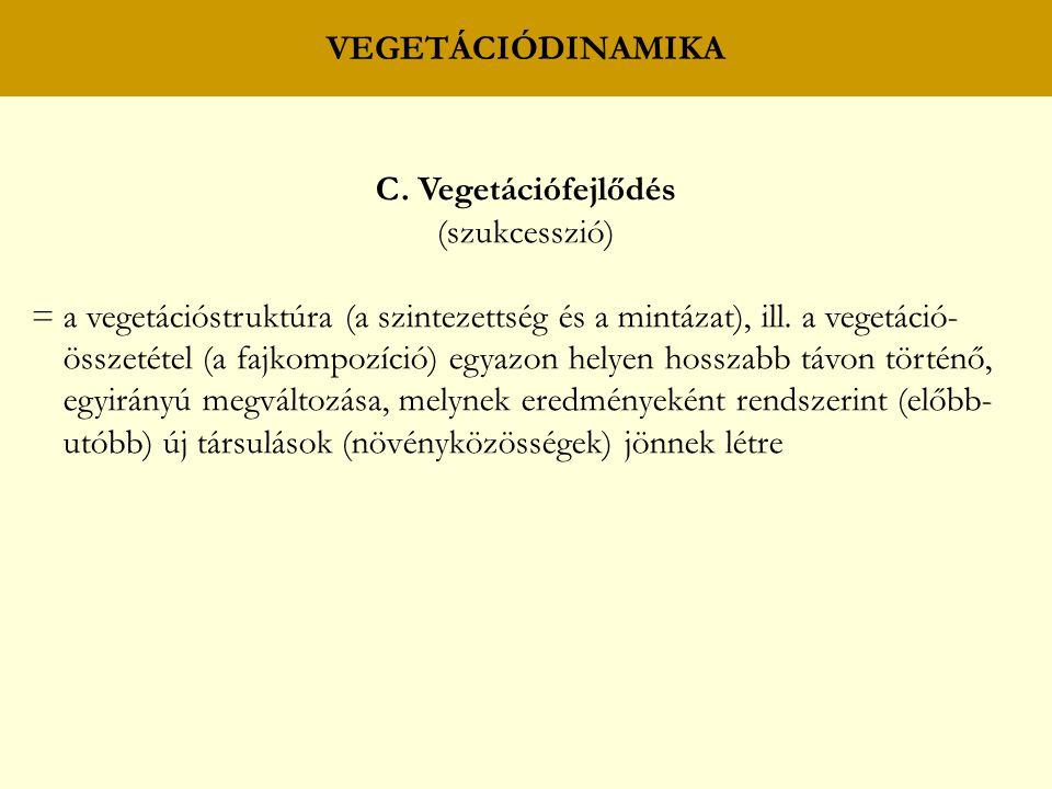 VEGETÁCIÓDINAMIKA C. Vegetációfejlődés (szukcesszió) = a vegetációstruktúra (a szintezettség és a mintázat), ill. a vegetáció- összetétel (a fajkompoz