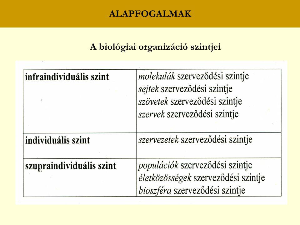 ALAPFOGALMAK A biológiai organizáció szintjei
