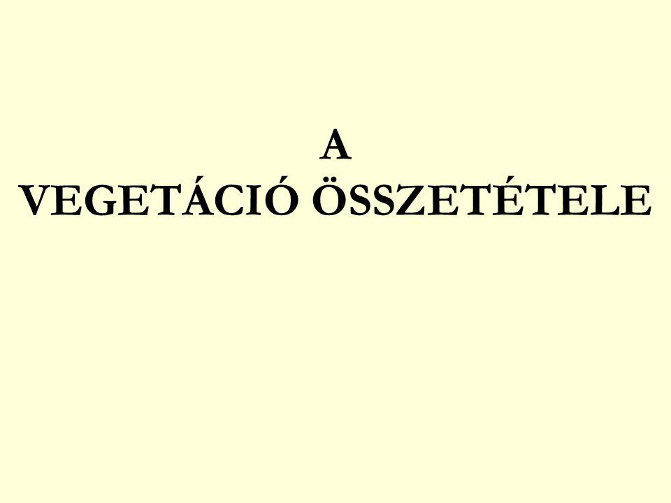 VEGETÁCIÓDINAMIKA C.