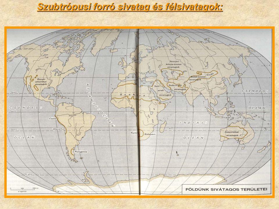 A szárazföldek felszínének több mint ¼-e félsivatag és sivatag.