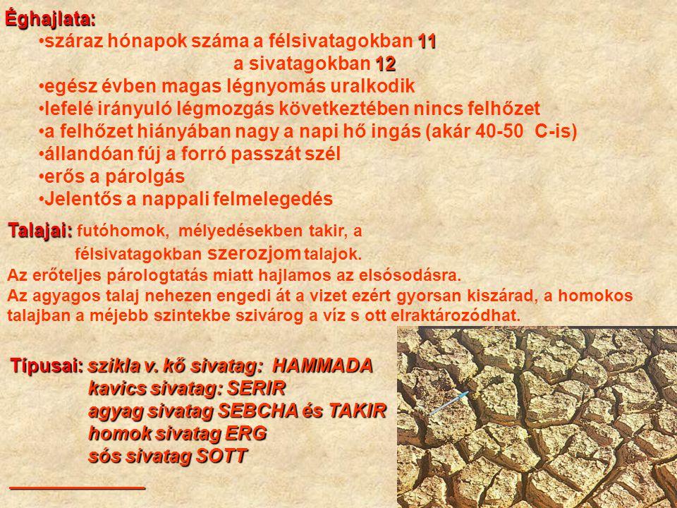Alacsony a fajok száma (pl.