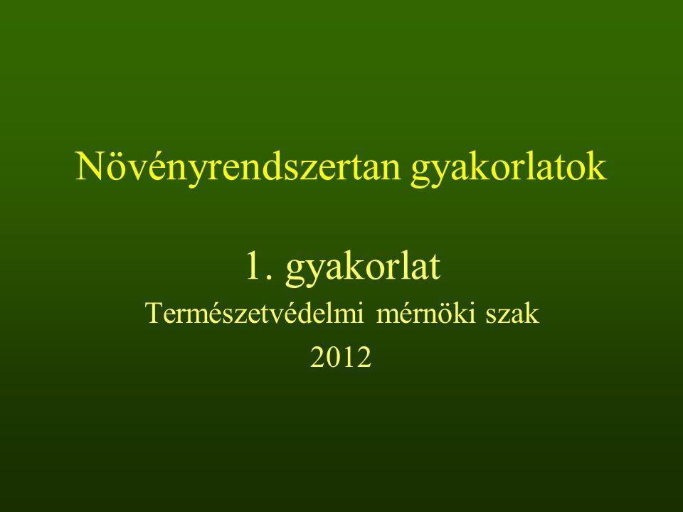 Növényrendszertan gyakorlatok 1. gyakorlat Természetvédelmi mérnöki szak 2012
