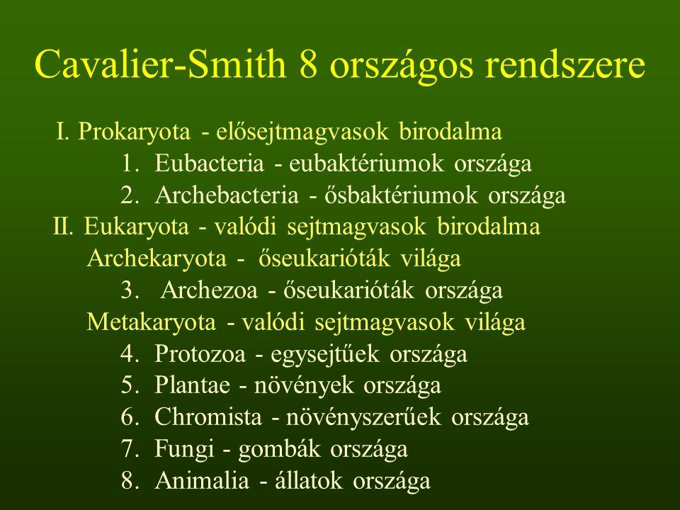 Cavalier-Smith 8 országos rendszere I.