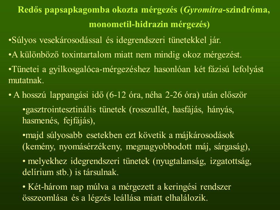 Redős papsapkagomba okozta mérgezés (Gyromitra-szindróma, monometil-hidrazin mérgezés) Súlyos vesekárosodással és idegrendszeri tünetekkel jár.