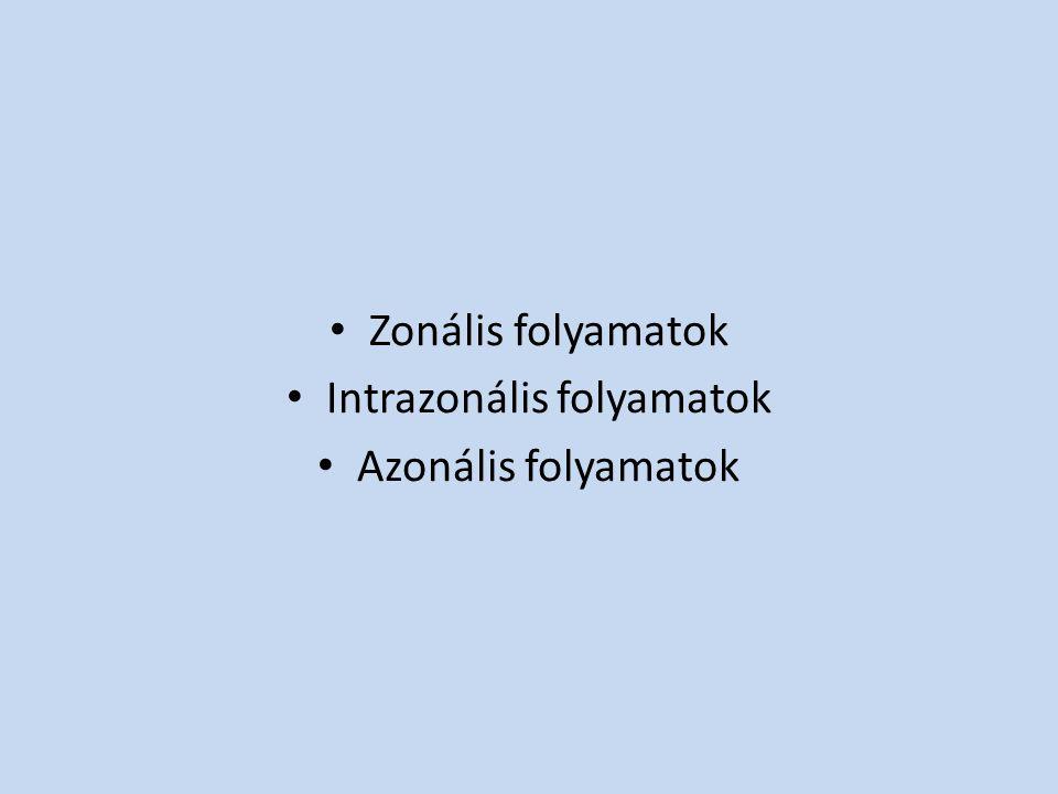 Zonális folyamatok Intrazonális folyamatok Azonális folyamatok