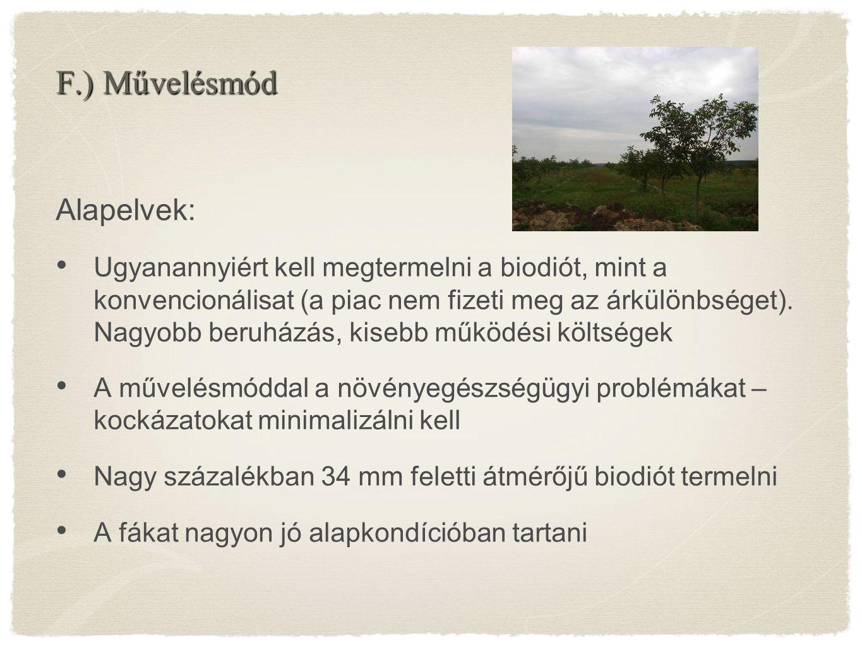 Alapelvek: Ugyanannyiért kell megtermelni a biodiót, mint a konvencionálisat (a piac nem fizeti meg az árkülönbséget). Nagyobb beruházás, kisebb működ
