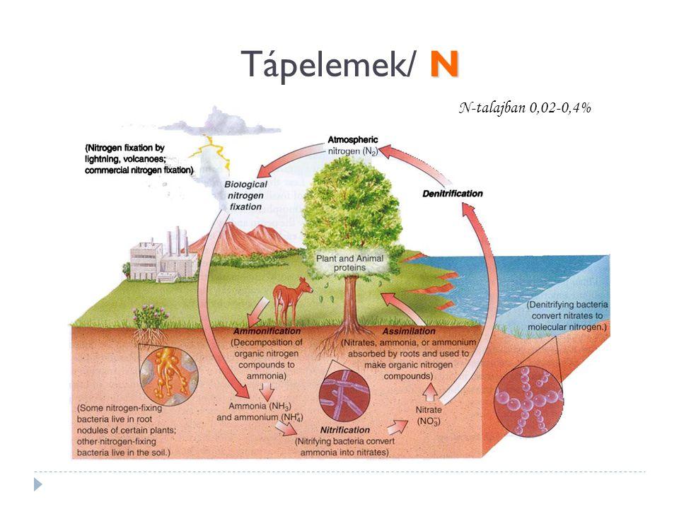 N Tápelemek/ N N-talajban 0,02-0,4%