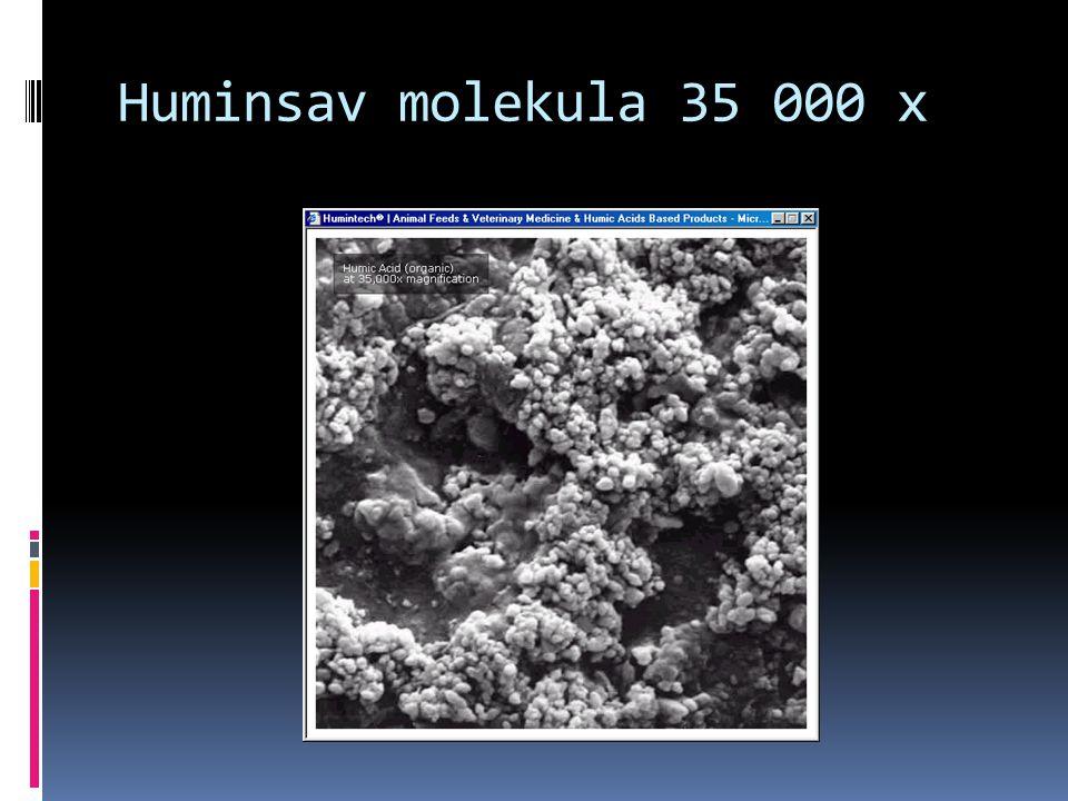 A huminsavak jellemző kémiai, biokémiai reakciói a következő három tulajdonságra vezethető visza.