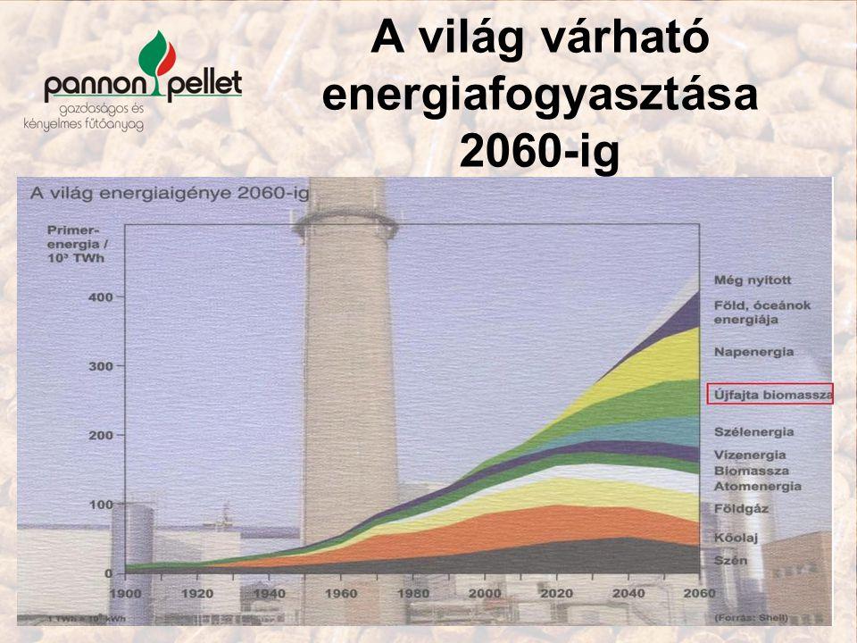 A világ várható energiafogyasztása 2060-ig