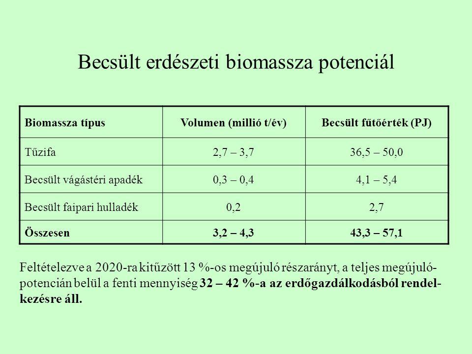 Becsült erdészeti biomassza potenciál Biomassza típusVolumen (millió t/év)Becsült fűtőérték (PJ) Tűzifa2,7 – 3,736,5 – 50,0 Becsült vágástéri apadék0,3 – 0,44,1 – 5,4 Becsült faipari hulladék0,22,7 Összesen3,2 – 4,343,3 – 57,1 Feltételezve a 2020-ra kitűzött 13 %-os megújuló részarányt, a teljes megújuló- potencián belül a fenti mennyiség 32 – 42 %-a az erdőgazdálkodásból rendel- kezésre áll.