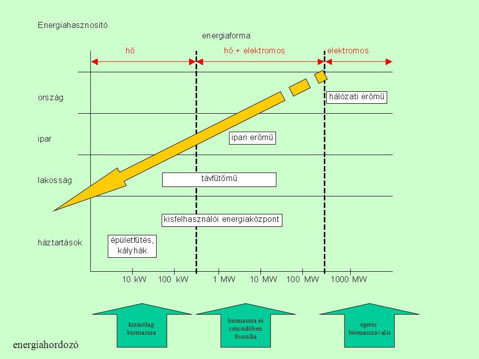 energiahordozó kizárólag biomassza biomassza és csúcsidőben fosszília égetés biomasszával is
