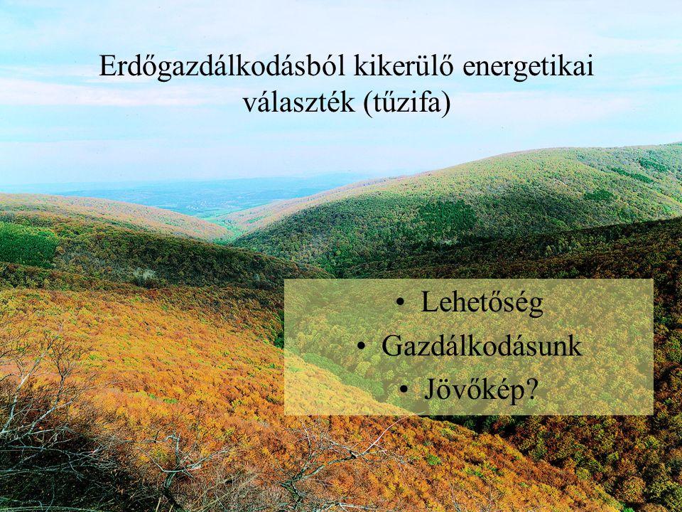 Erdőgazdálkodásból kikerülő energetikai választék (tűzifa) Lehetőség Gazdálkodásunk Jövőkép?