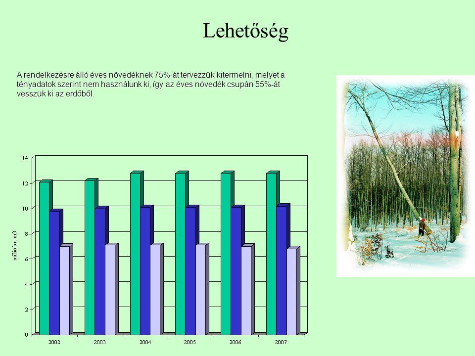 A rendelkezésre álló éves növedéknek 75%-át tervezzük kitermelni, melyet a tényadatok szerint nem használunk ki, így az éves növedék csupán 55%-át vesszük ki az erdőből.