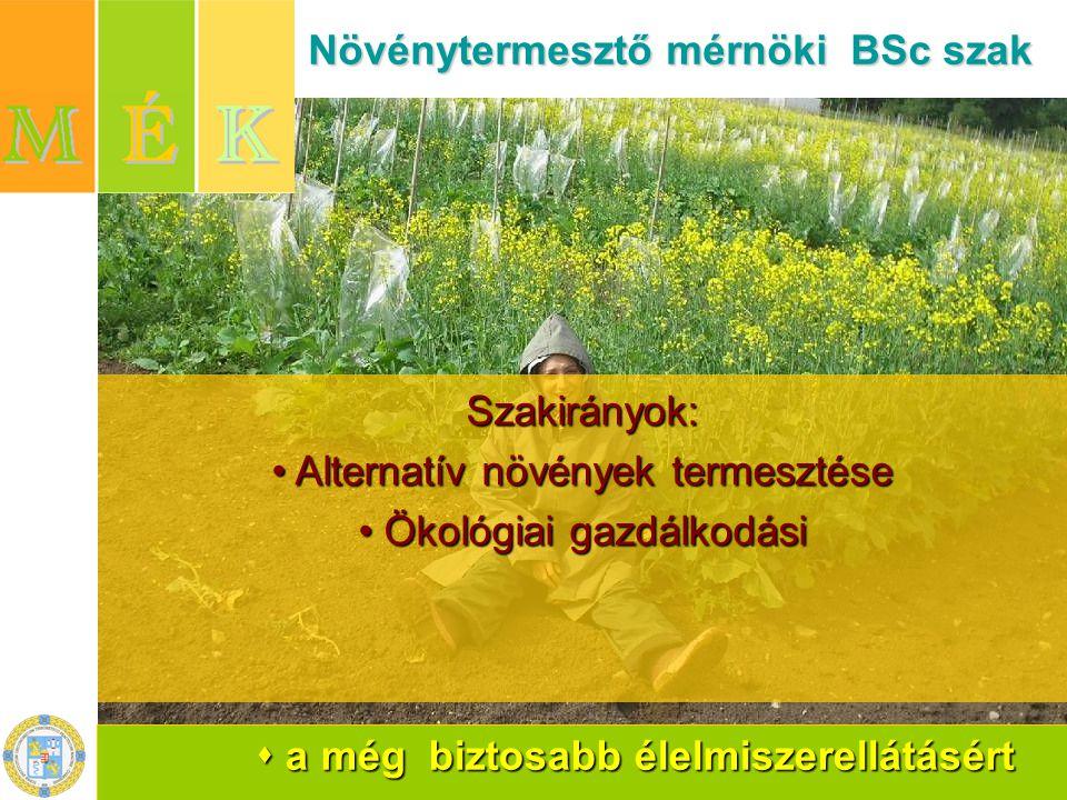  a még biztosabb élelmiszerellátásért Növénytermesztő mérnöki BSc szak Növénytermesztő mérnöki BSc szakSzakirányok: Alternatív növények termesztése Ökológiai gazdálkodási