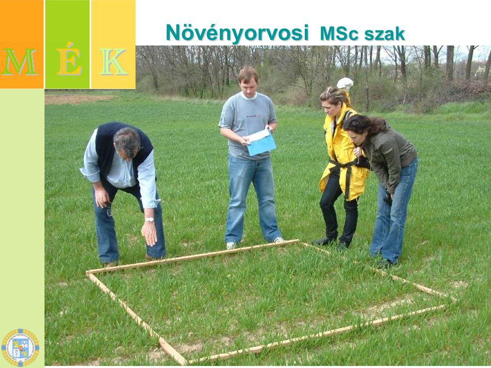 Mezőgazdasági biotechnológus MSc szak Mezőgazdasági biotechnológus MSc szak Növényi biotechnológia szakirány