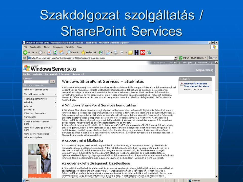 Szakdolgozat szolgáltatás / Tartalomvédelem
