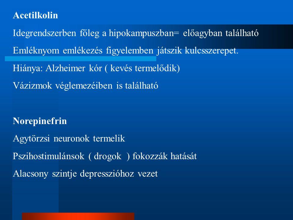 Acetilkolin Idegrendszerben főleg a hipokampuszban= előagyban található Emléknyom emlékezés figyelemben játszik kulcsszerepet. Hiánya: Alzheimer kór (