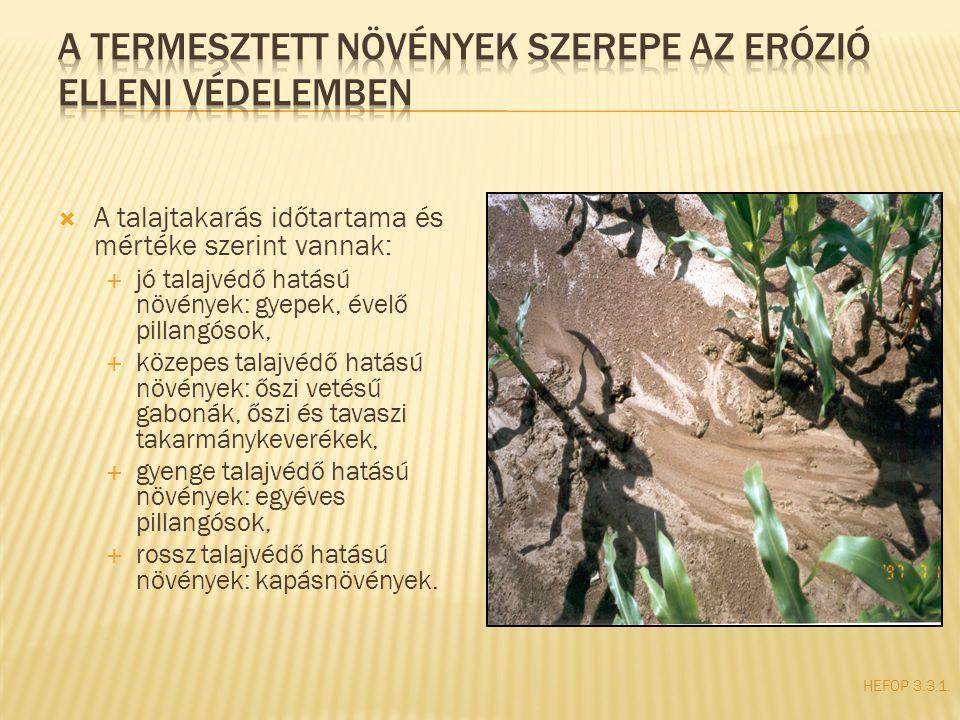 HEFOP 3.3.1.  A talajtakarás időtartama és mértéke szerint vannak:  jó talajvédő hatású növények: gyepek, évelő pillangósok,  közepes talajvédő hat