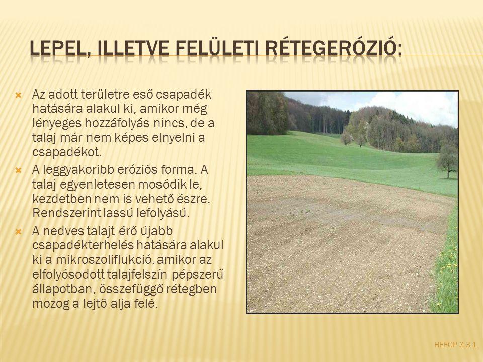  Az adott területre eső csapadék hatására alakul ki, amikor még lényeges hozzáfolyás nincs, de a talaj már nem képes elnyelni a csapadékot.  A leggy