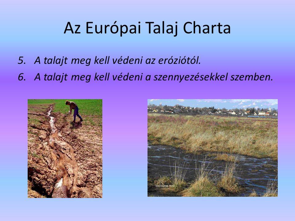 Az Európai Talaj Charta 5.A talajt meg kell védeni az eróziótól. 6.A talajt meg kell védeni a szennyezésekkel szemben.