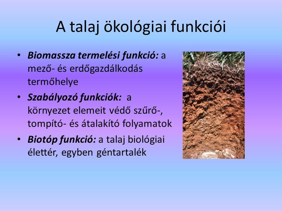 A talaj ökológiai funkciói Biomassza termelési funkció: a mező- és erdőgazdálkodás termőhelye Szabályozó funkciók: a környezet elemeit védő szűrő-, to