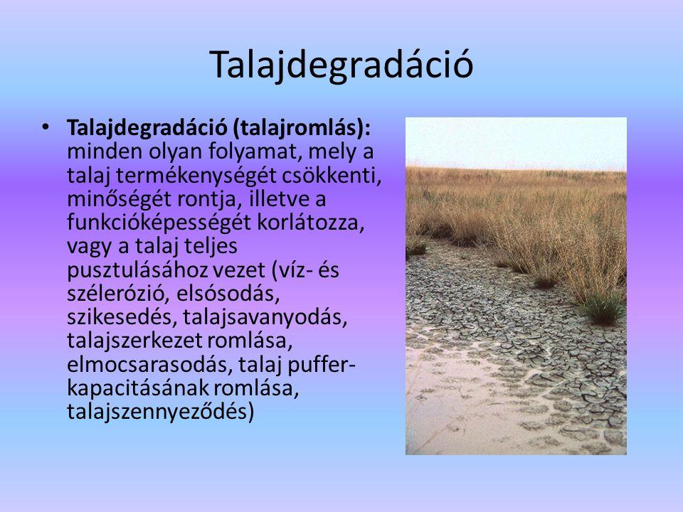 Talajdegradáció Talajdegradáció (talajromlás): minden olyan folyamat, mely a talaj termékenységét csökkenti, minőségét rontja, illetve a funkcióképess