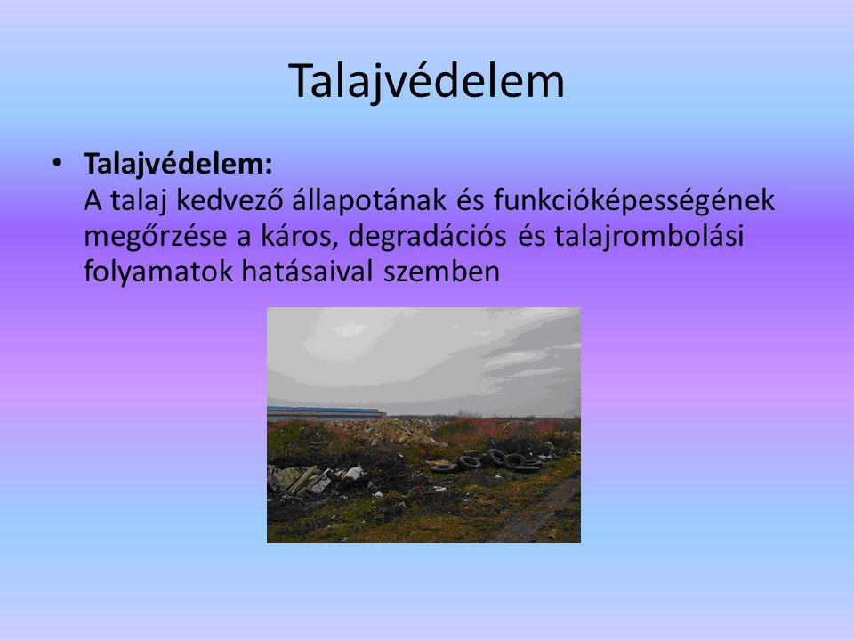 Talajvédelem Talajvédelem: A talaj kedvező állapotának és funkcióképességének megőrzése a káros, degradációs és talajrombolási folyamatok hatásaival s