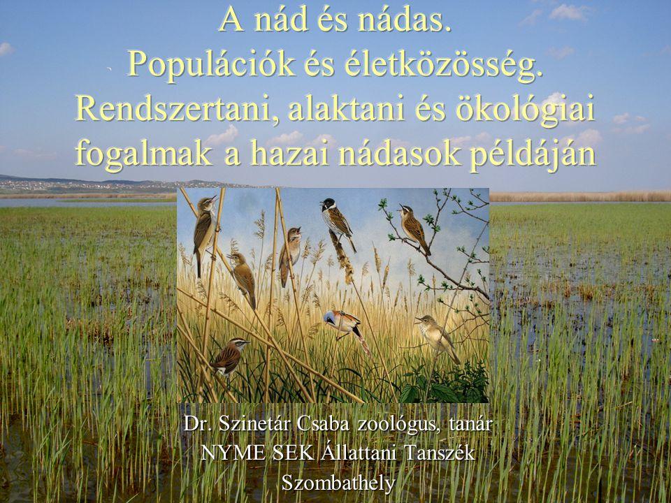 Dr. Szinetár Csaba zoológus, tanár NYME SEK Állattani Tanszék Szombathely