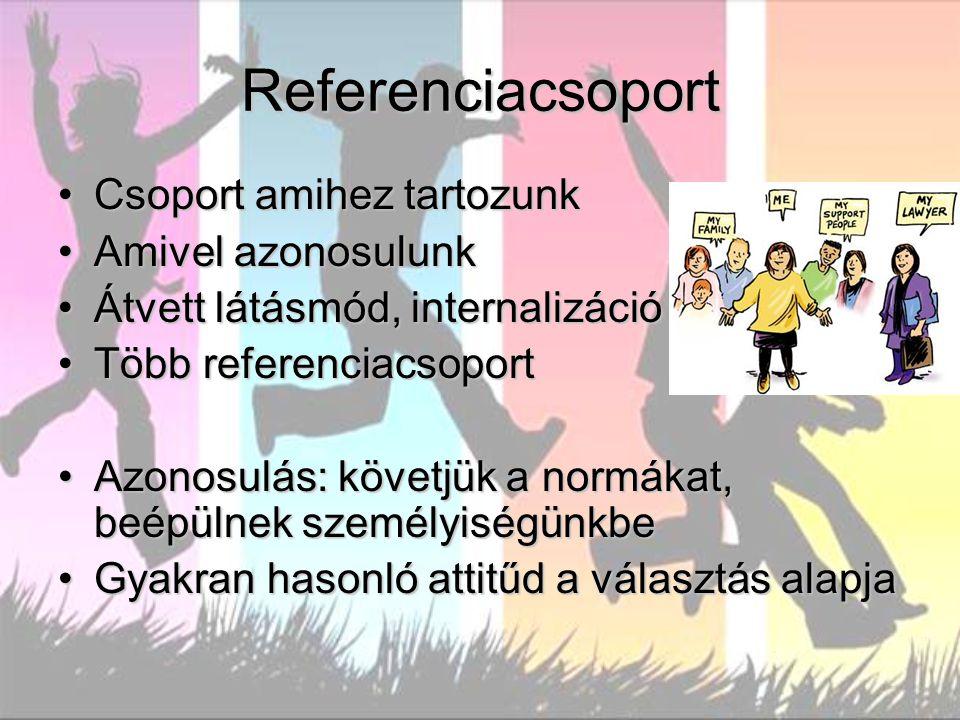 Referenciacsoport Csoport amihez tartozunkCsoport amihez tartozunk Amivel azonosulunkAmivel azonosulunk Átvett látásmód, internalizációÁtvett látásmód