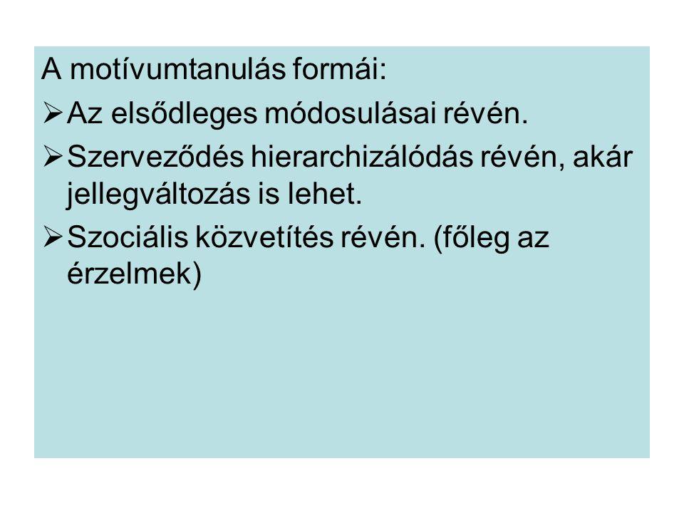 A motívumtanulás formái:  Az elsődleges módosulásai révén.  Szerveződés hierarchizálódás révén, akár jellegváltozás is lehet.  Szociális közvetítés