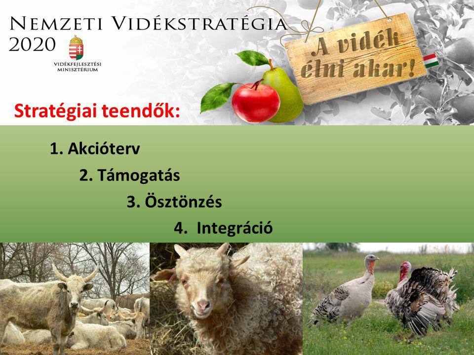 1. Akcióterv 2. Támogatás 3. Ösztönzés 4. Integráció Stratégiai teendők:
