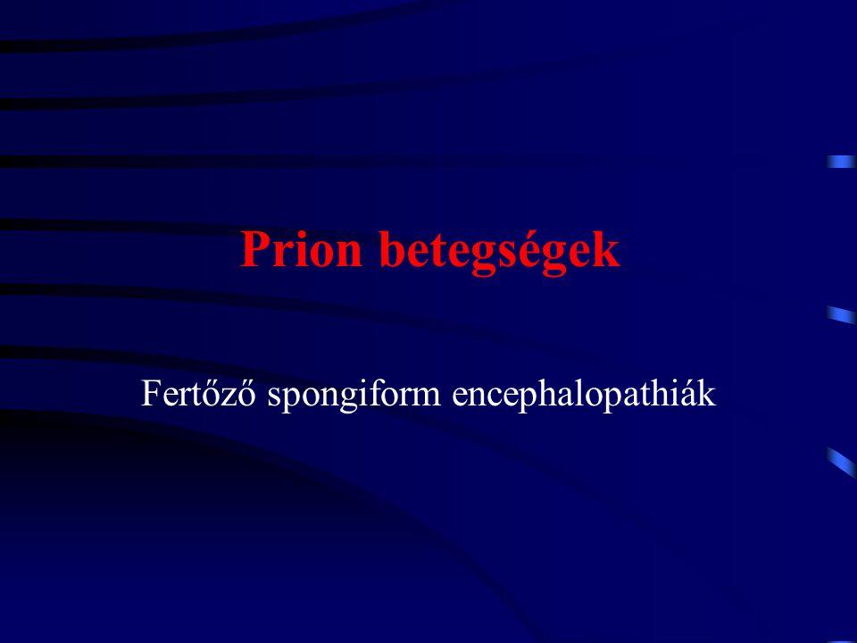 Fertőző spongiform encephalopathia prionok által okozott az embert és számos emlős állatfajt érintő a központi idegrendszer progresszív, degeneratív elváltozásával járó halálos kimenetelű betegségek gyűjtőneve.