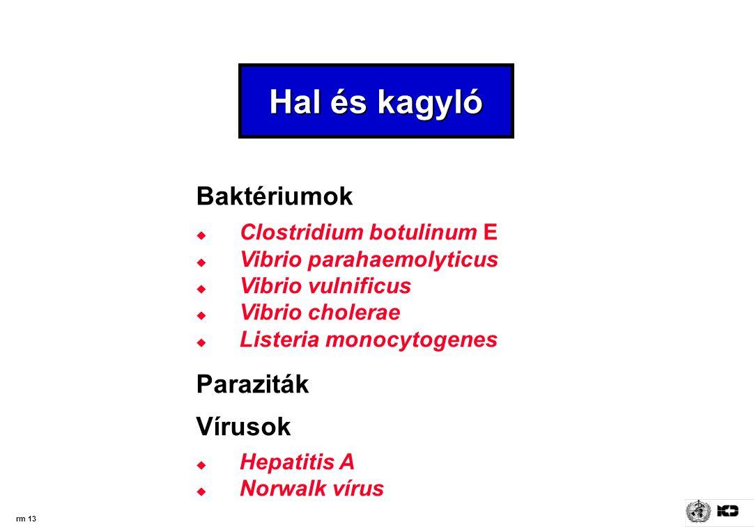 rm 13 Hal és kagyló Baktériumok  Clostridium botulinum E  Vibrio parahaemolyticus  Vibrio vulnificus  Vibrio cholerae  Listeria monocytogenes Paraziták Vírusok  Hepatitis A  Norwalk vírus