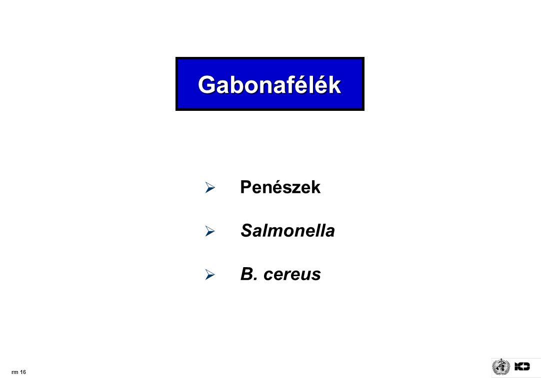 rm 16  Penészek  Salmonella  B. cereus Gabonafélék